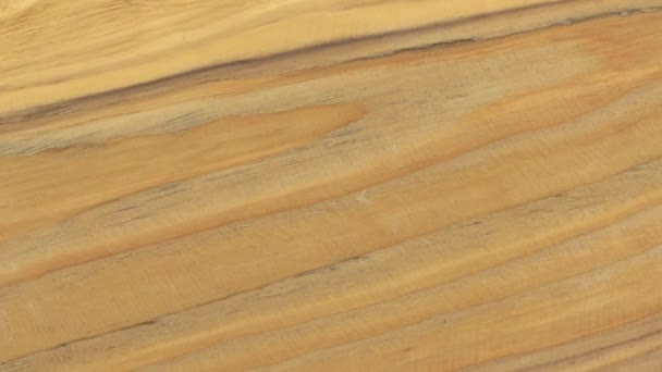 Detail z rotace texturu dřeva borovice