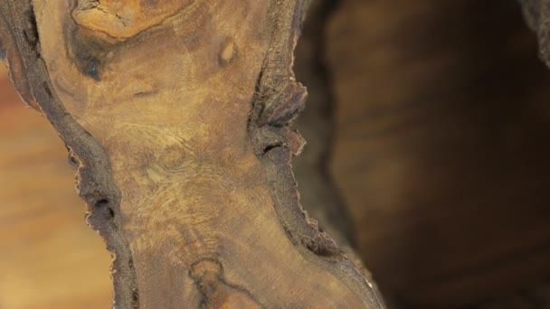 Detail, rotace krásná ořechová texturu. Praskliny, prázdnota, kůra