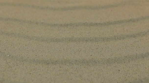 Close-up, approaching sand dunes.
