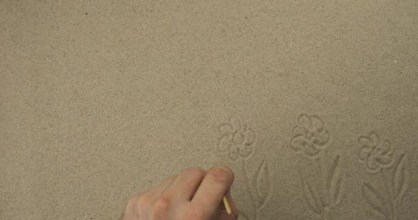 Rajzolok egy bottal a homokon. Sok virágzó százszorszép virág. A turizmus és a szabadidő szimbolikus rajza.