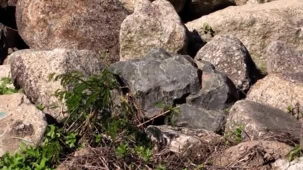 plnoformátový záběr z kamene