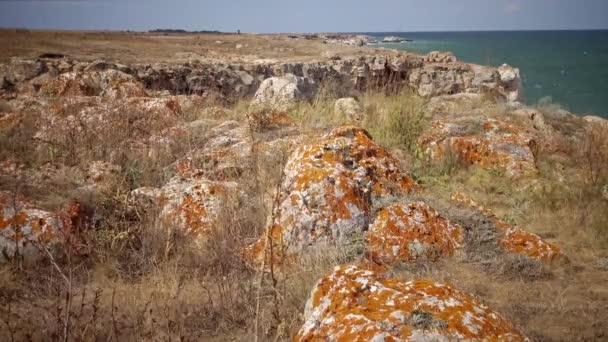 Šedá kámen vztahuje lišejník. Stone pobřeží, lišejníky na kamenech poblíž vesnice Tyulenovo, Bulharsko
