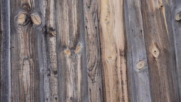 hölzerner Hintergrund, alte Scheunentafeln mit Jahresringen auf verrottendem Holz, neues Mexiko