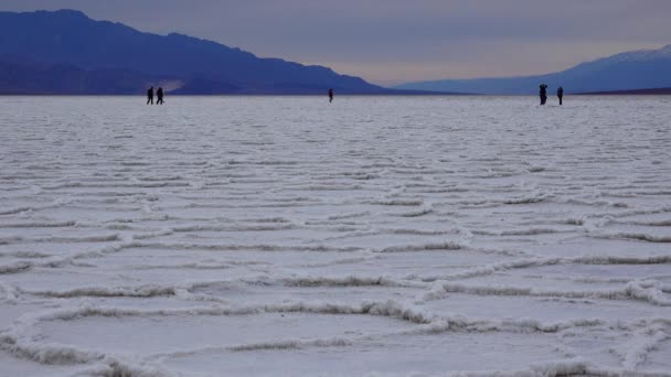 View of the Basins`s salt flats, Death Valley National Park, Death Valley,  California
