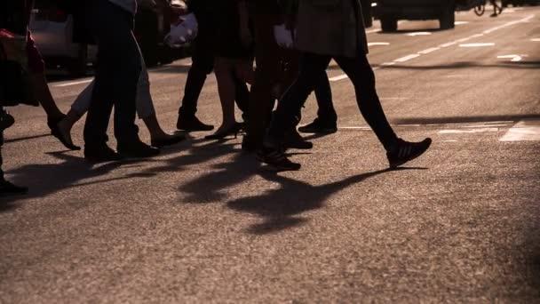 chodci v přechod pro chodce