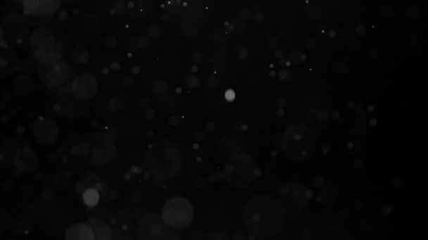 Fall Magic Snowflakes. Small white particles flow in the air on a black background. Slow Motion at a rate of 240 fps