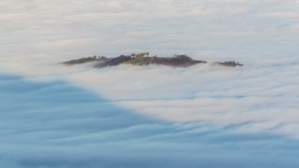 Island forest in mist morning time lapse. Beautiful misty waves of low clouds