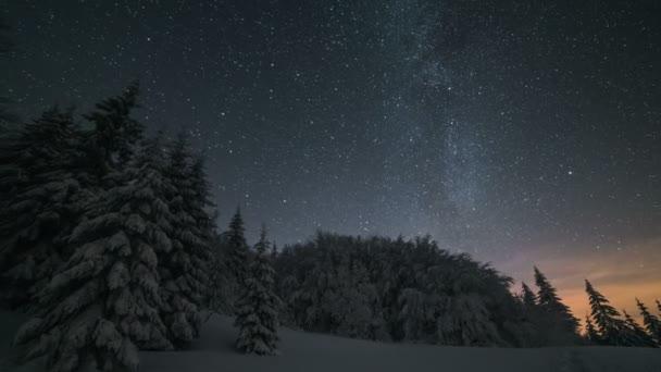 Vánoční zimní noční krajina s hvězdami oblohy nad zasněženými stromy. Časová prodleva astronomie přiblížit