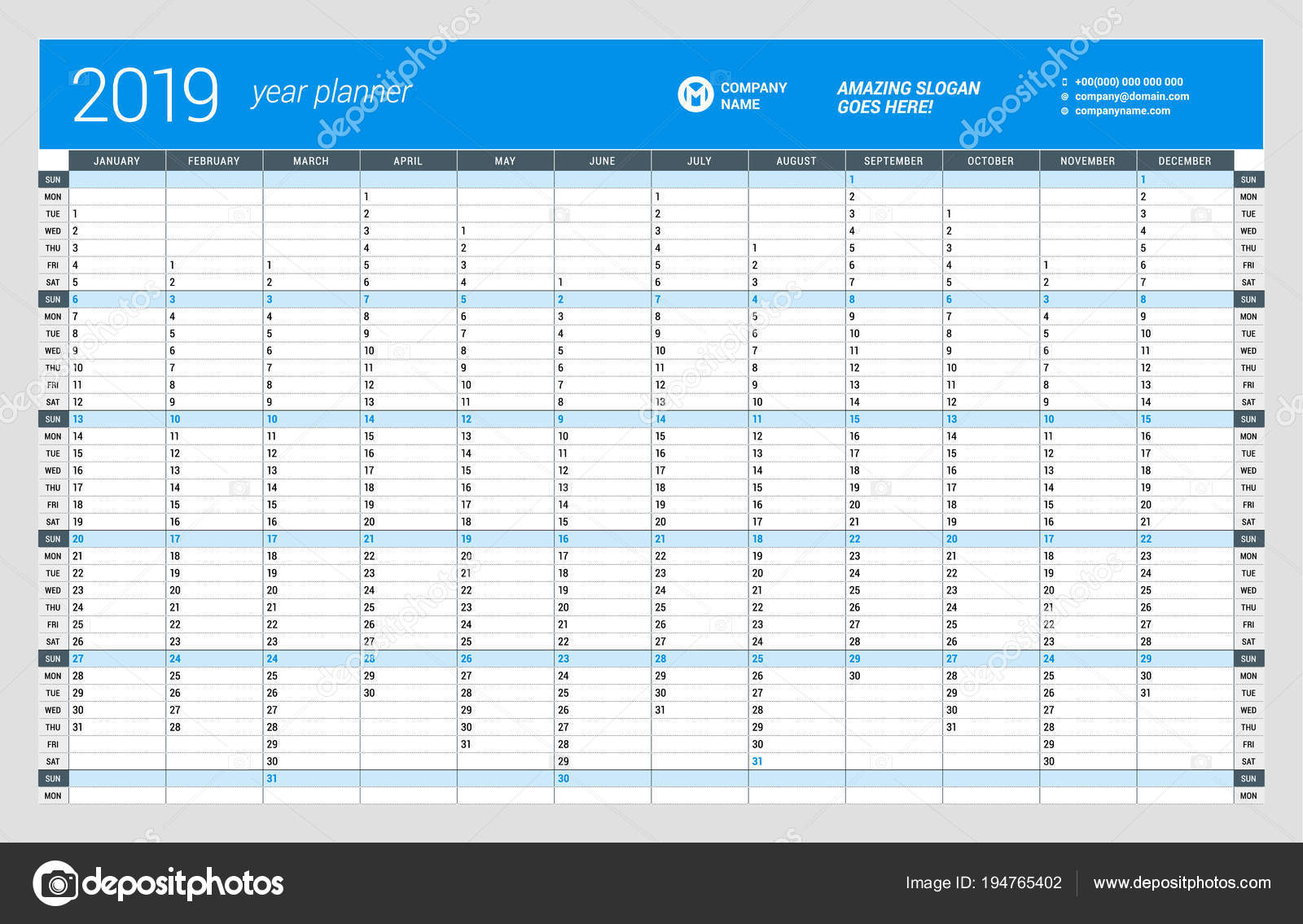 Yearly Wall Calendar Planner Template For 2019 Year Vector Design