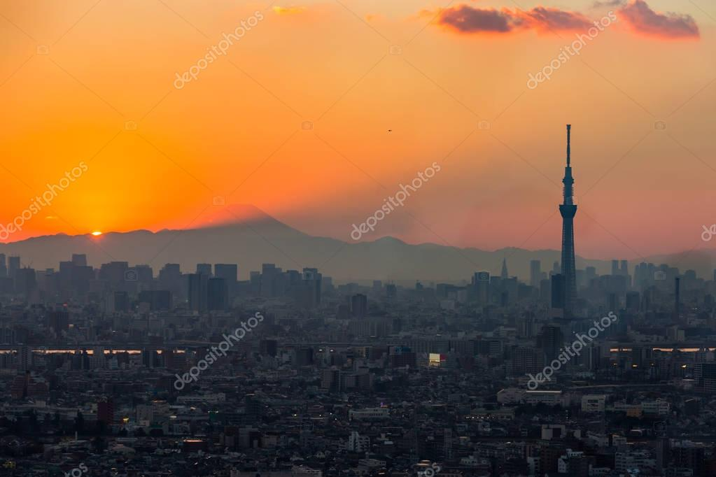 Tokyo city in Sunset