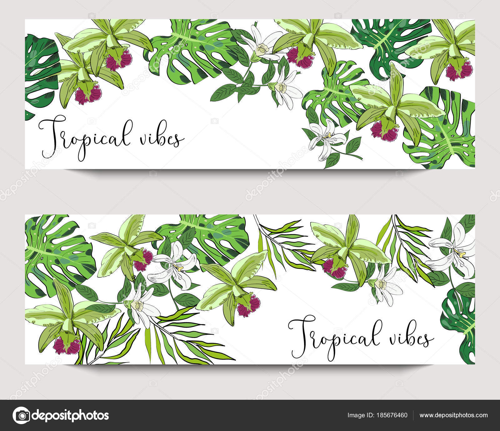 Vector Horizontal Exotic Collection Banners With Hand Drawn Tropical Leaves And Flowers On White Background Design For Packaging Tea Shop Drink Menu Homeopathy And Health Care Products Stock Vector C Tetianadudarik 185676460