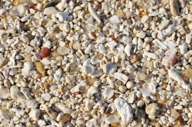 Closeup on Sand, Sand Texture