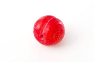 Japanese plum (Prunus salicina) on white background
