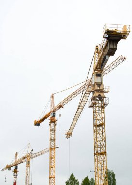 Industrial construction cranes in the city.