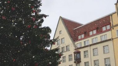 Christmas tree at the Town Hall Square in Tallinn. 2017.