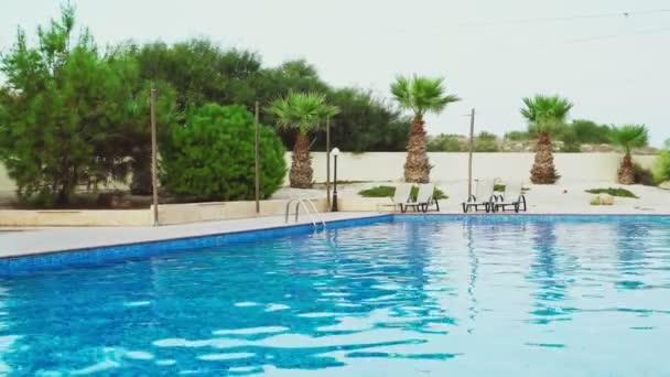 Bazén s palmami a lehátky venku.