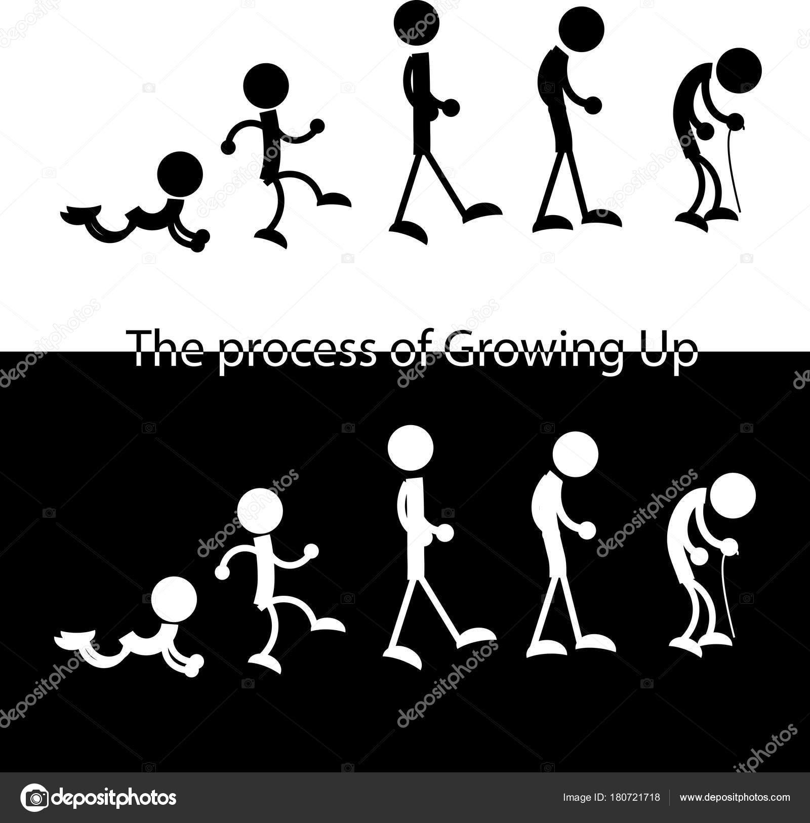 der Mann von jung zu alt schematische Figuren — Stockvektor © bemoll ...