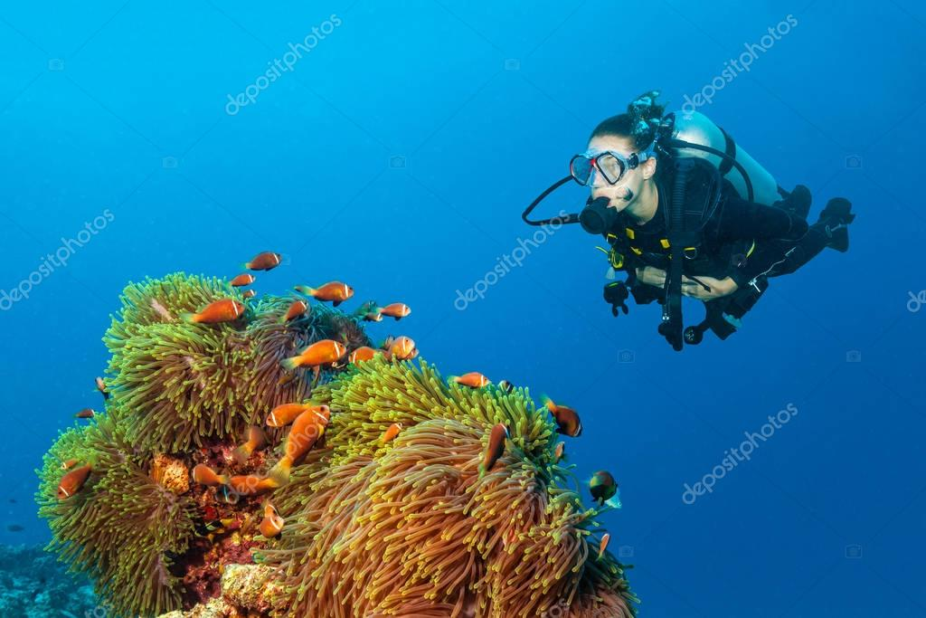 Woman scuba diver exploring claun fish