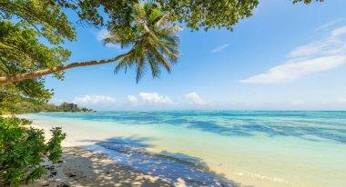 Beautiful beach of Seychelles, island La Digue