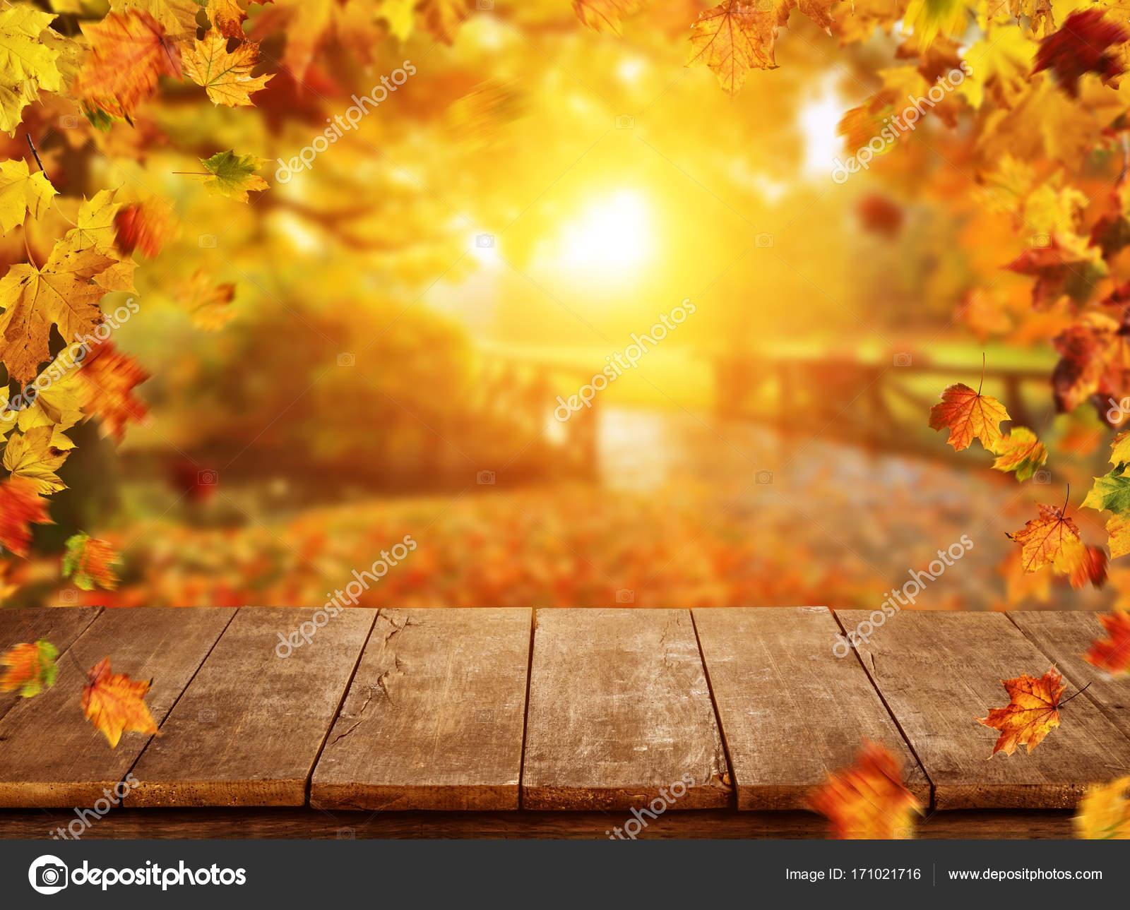 Im genes hojas cayendo fondo de oto o con hojas cayendo - Descargar autumn leaves ...