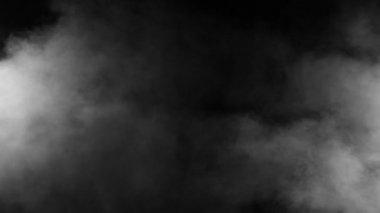 Slow Motion Realistic Smoke Effect Black Background — Stock Video