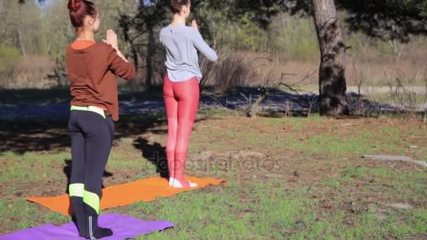 Dvojice žen, cvičení jóga fitness sportovní v lesoparku.