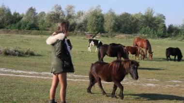 Beautiful hipster mixed race girl walking with herd of horses in countryside
