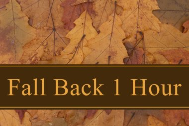 Fall Back 1 Hour message