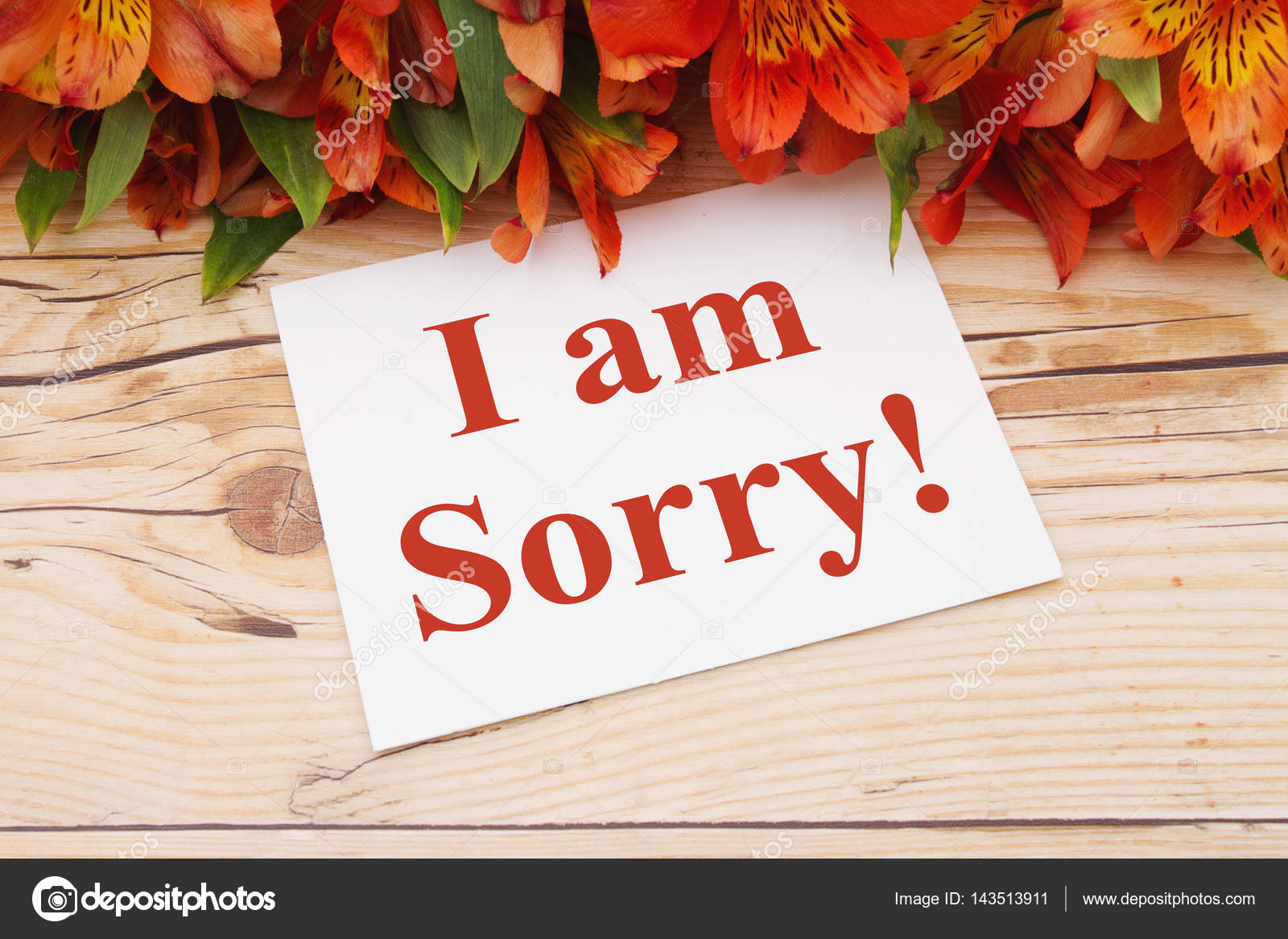 I am sorry message stock photo karenr 143513911 i am sorry message a bouquet of orange lilies on weathered wood with a greeting card with text i am sorry photo by karenr m4hsunfo