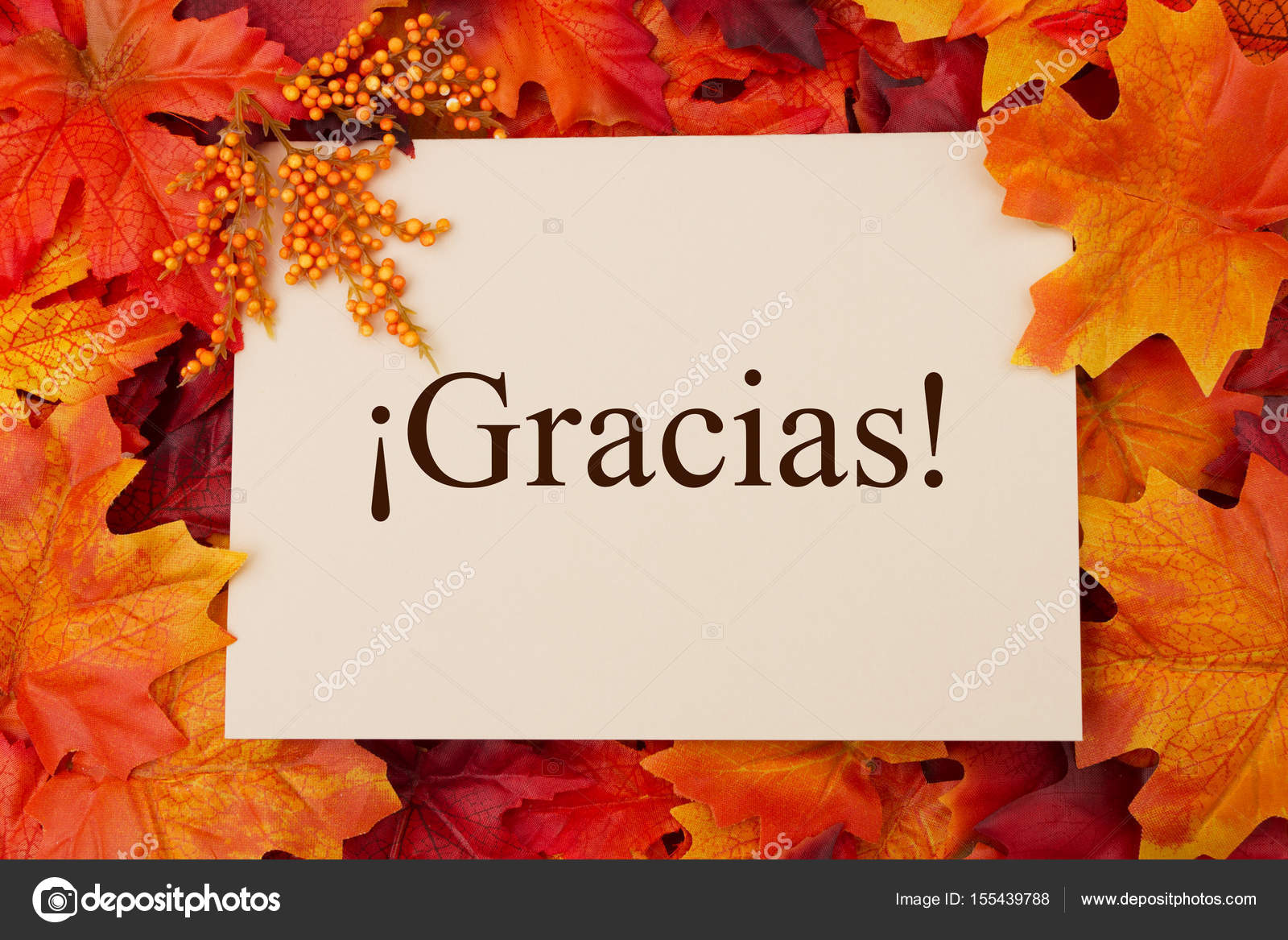 Spanish thank you greeting card stock photo karenr 155439788 spanish thank you greeting card stock photo kristyandbryce Images