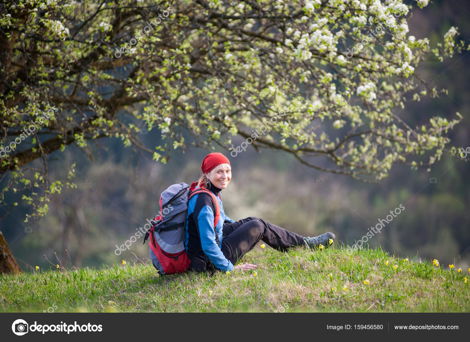f38a4c3a3c4 Happy female backpacker with a backpack sitting on top of hill with yellow  wildflowers near lonely blooming tree and looking to the camera, ...