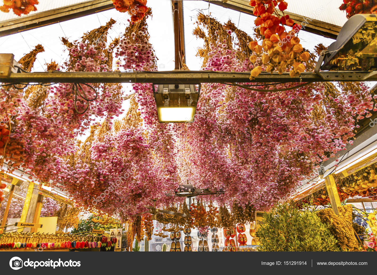 Dried Flowers Outdoor Flower Market Amsterdam Holland Netherlands — Stock Photo