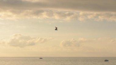Hang-gliding over the Black sea, Georgia