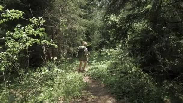 junges mädchen wandert mit backpack im bergwald - georgien nationalpark