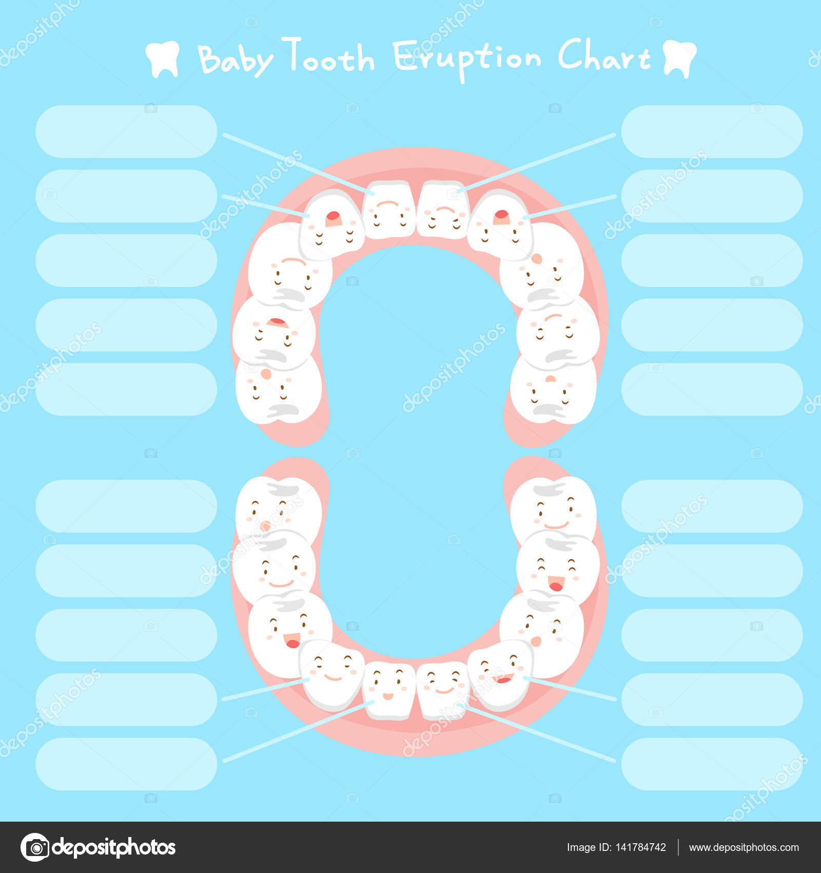 Cartoon baby tooth eruption chart stock vector estherqueen999 cartoon baby tooth eruption chart stock vector ccuart Image collections