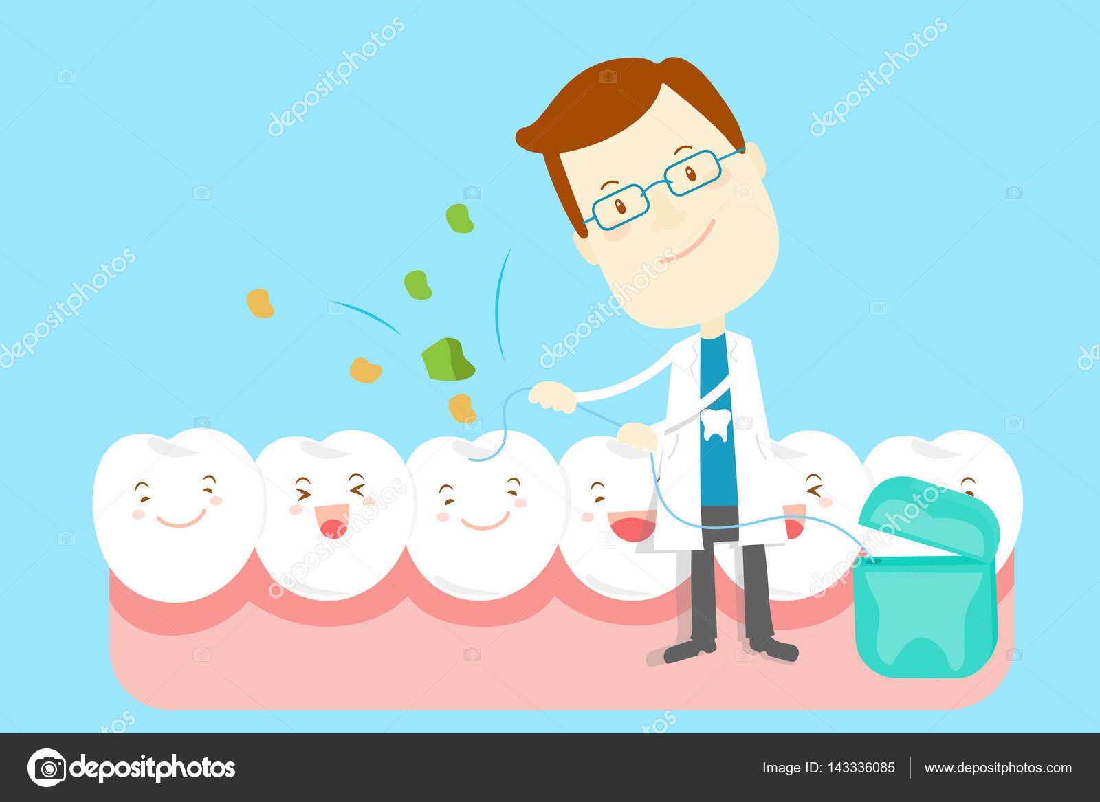 7efacdbfa Dentista de bonito dos desenhos animados levar fio dental dente limpo —  Vetor de ...
