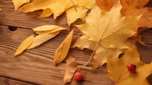 gelbe und orangefarbene Ahornblätter mit roten Äpfeln und Eschen auf dunkelbraunem Holztischhintergrund. Fotoshooting im Studio backstage. braune Tasse Tee.