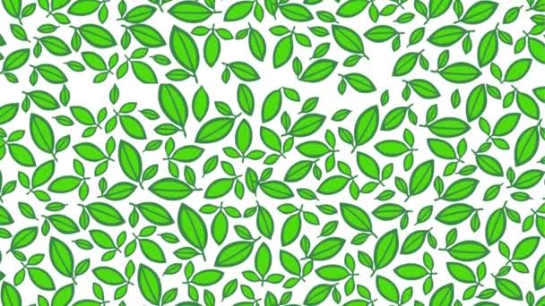 leafs eco green falling foliage motion illustration