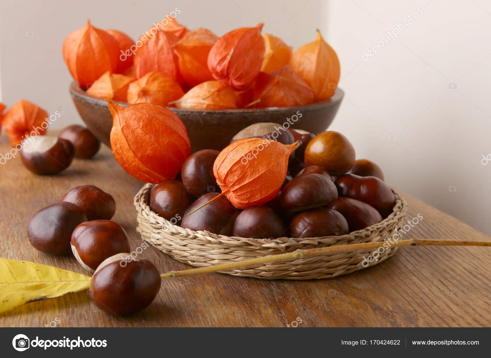 Herfst In Interieur : Herfst plant decoraties in interieur u2014 stockfoto © vaitekune #170424622