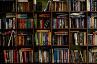 Books on a wooden shelfs. old and new books on wooden shelves