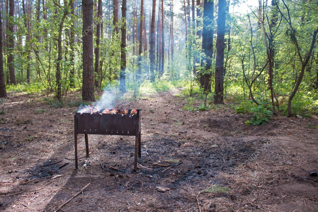 summer leisure: barbecue in the forest. cooking shashlik on barbecue, closeup. meat in metal brazier.