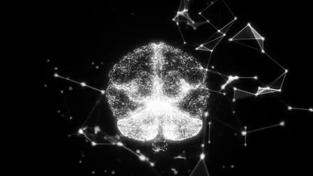Lidský mozek je tvořen obkroužení částice.