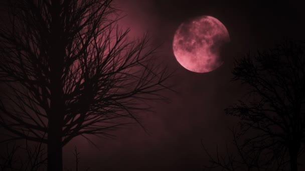 Blood red moon noční obloha. strašidelné stromy silueta. temnota. strašidelné obloha. mraky táhnou