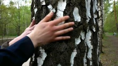 Girl and guy are stroked by the trunk of a tree