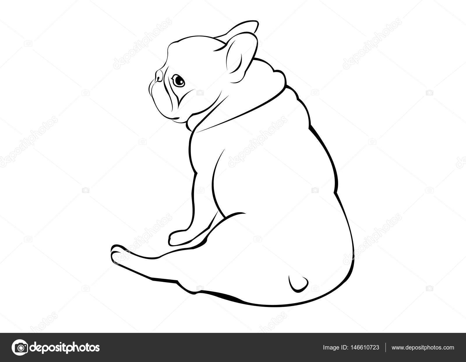 perro, raza, vector, lindo, mascotas, animal, bulldog, Francés ...