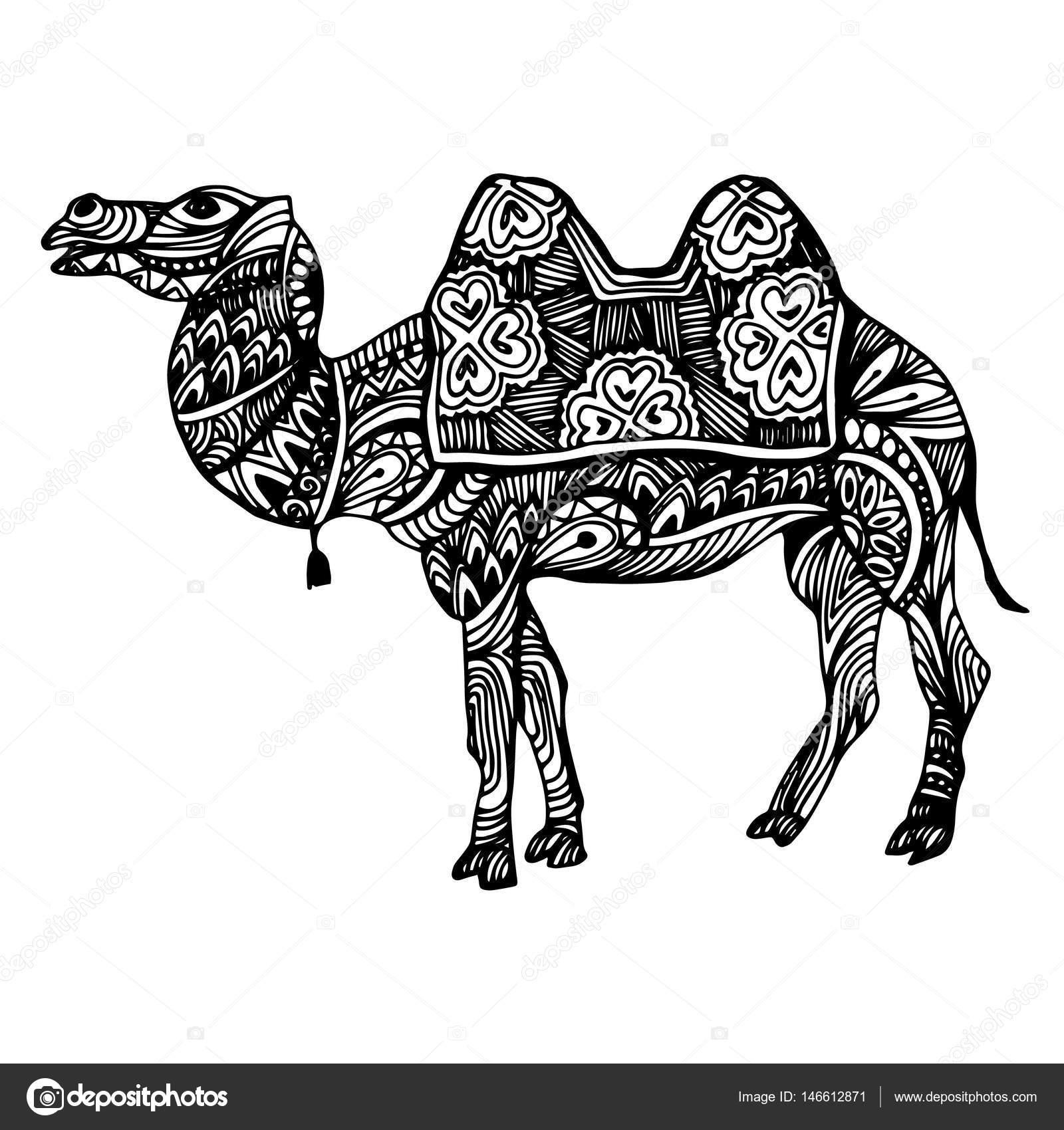 Egipto, camello, vector, desierto, Ilustración, animal, naturaleza ...
