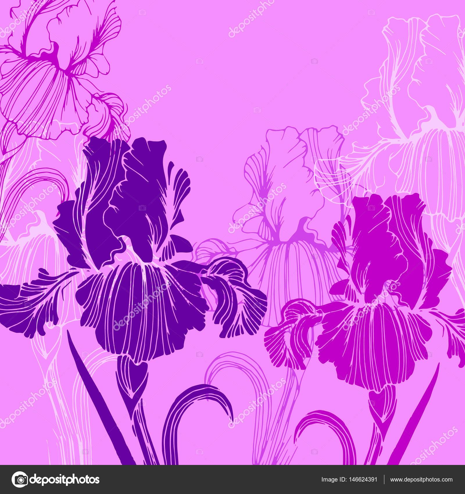花アイリス自然花植物ベクトル夏春デザインイラスト