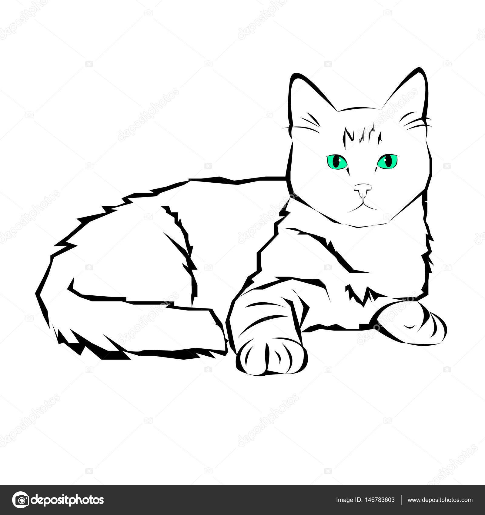 Jonge Babe pussy pics