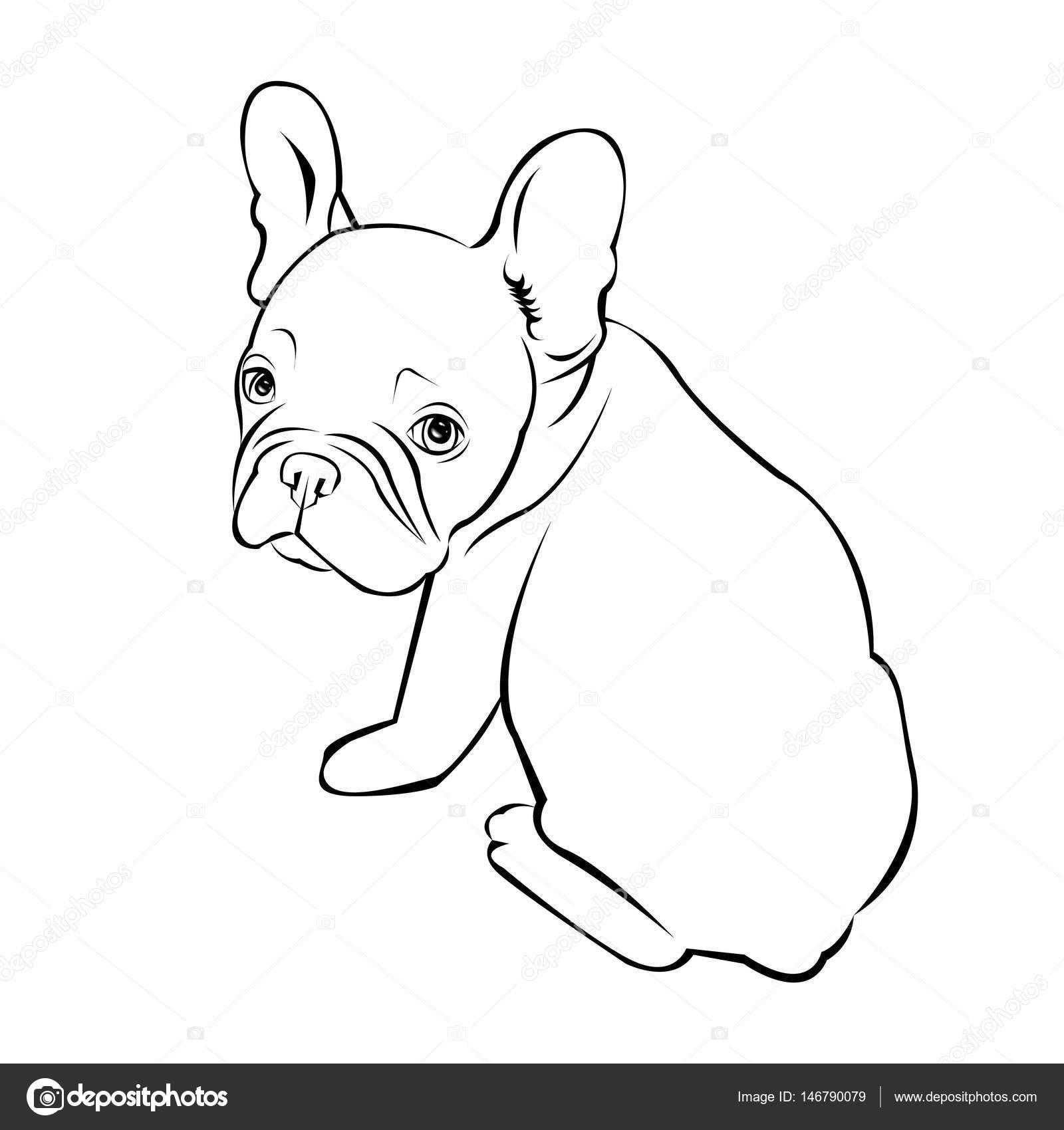 perro vector raza Linda mascotas animales bulldog francés — Vector ...