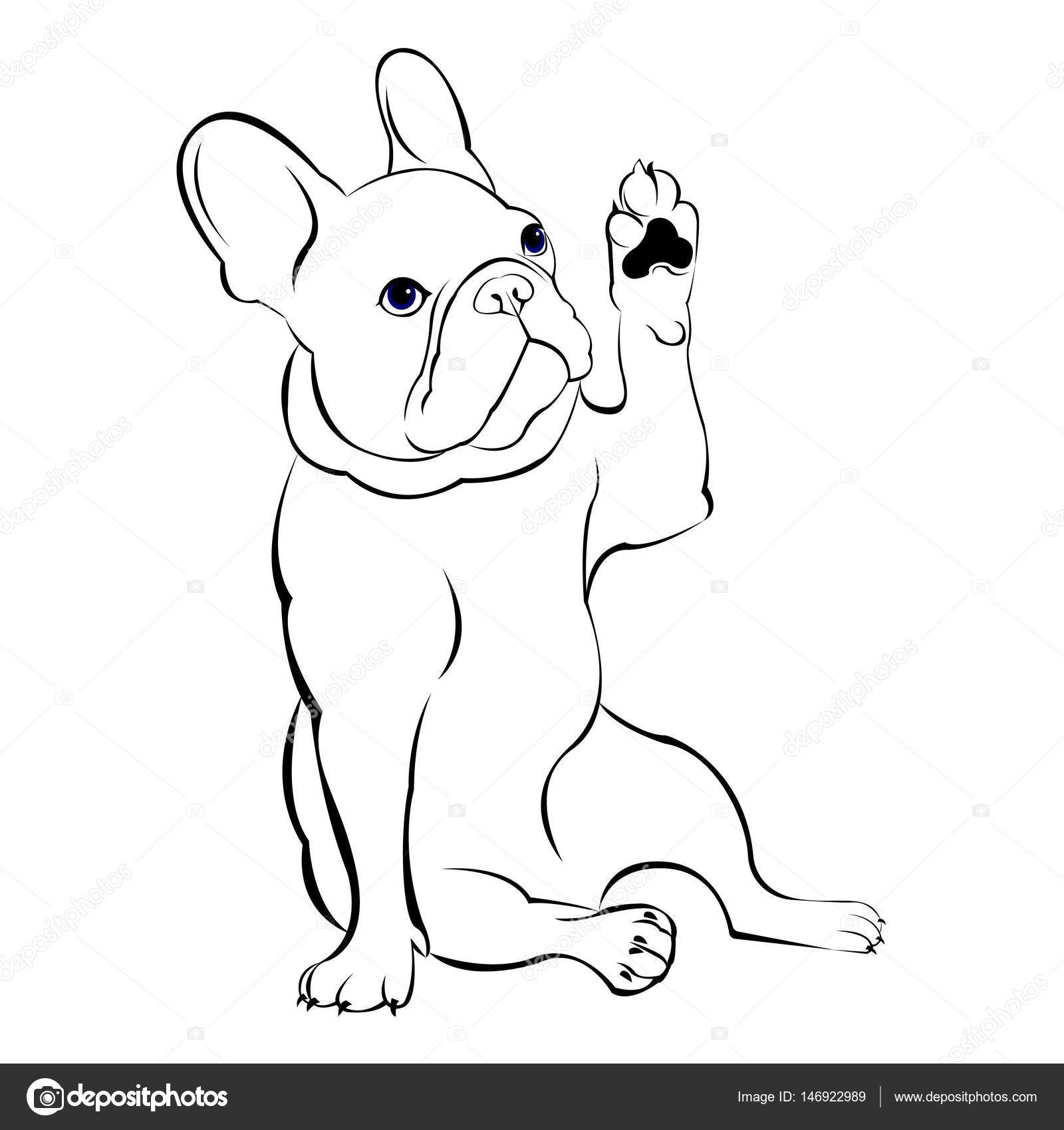 perro, raza, vector, lindo, mascotas, animal, bulldog, Frances ...
